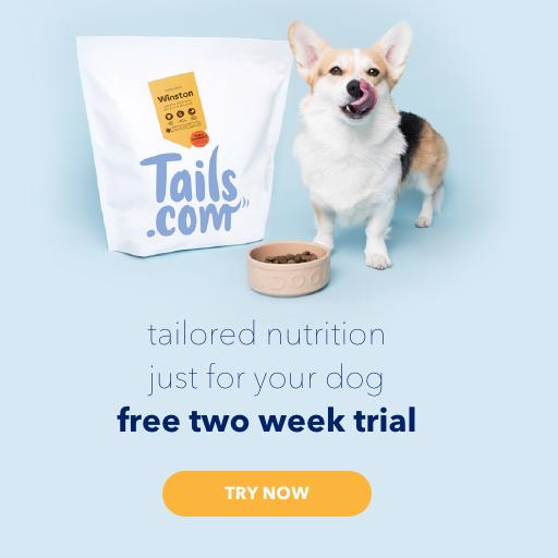 2 Week Free Trial for Tails.com - Food as unique as your dog!